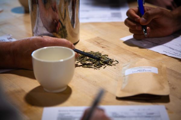 PERPETUAL STUDENT OF TEA